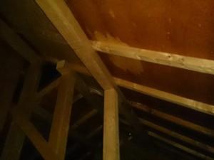スレート屋根雨漏り調査_小屋裏点検