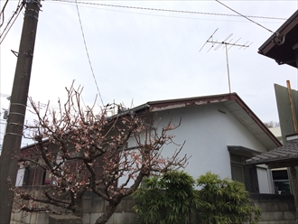 藤沢市車が当たって破損した事務所軒樋の調査