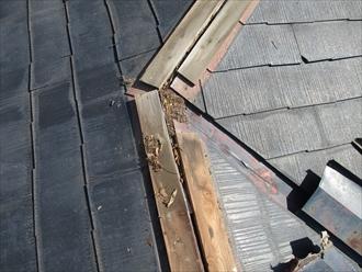 湘南藤沢市築21年の屋根メンテナンス棟板金交換