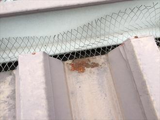 折半屋根錆び拡大