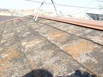 横浜市港北区 屋根カバー工法前の調査 屋根の塗膜が剥がれて苔も生えている