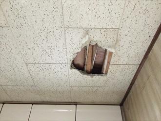 横浜市瀬谷区で防水紙が原因の雨漏りで屋根葺き直しを行います