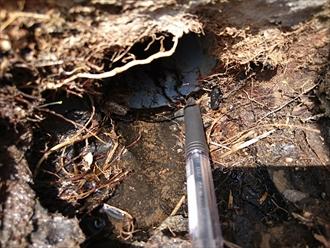 排水管との取り合い