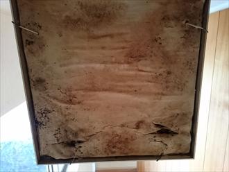 バルコニー防水の劣化は雨漏りに直結します|横浜市保土ケ谷区