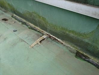 シートがめくれて雨漏りする屋上防水|川崎市高津区