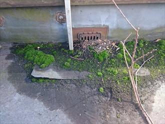 雨漏りの原因は屋上防水の排水口の回りです|川崎市川崎区