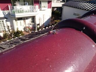 平板瓦の棟漆喰が剥がれて下地に傷みが出ています|横浜市旭区