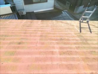 屋根表面の状況