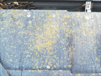 屋根材・表面の劣化