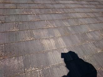 野地板の傷みでカバー工事か葺き替え工事か判断します|横浜市戸塚区