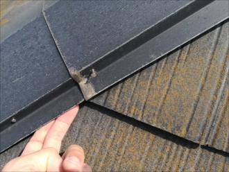棟板金の浮き(釘浮き)