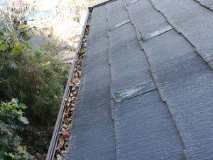 雨樋の詰まりと屋根外壁の劣化