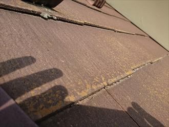 築15年・屋根塗装を行う前の調査|横浜市都筑区