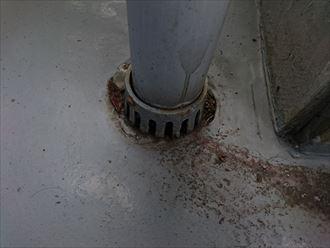 バルコニー防水の排水部分