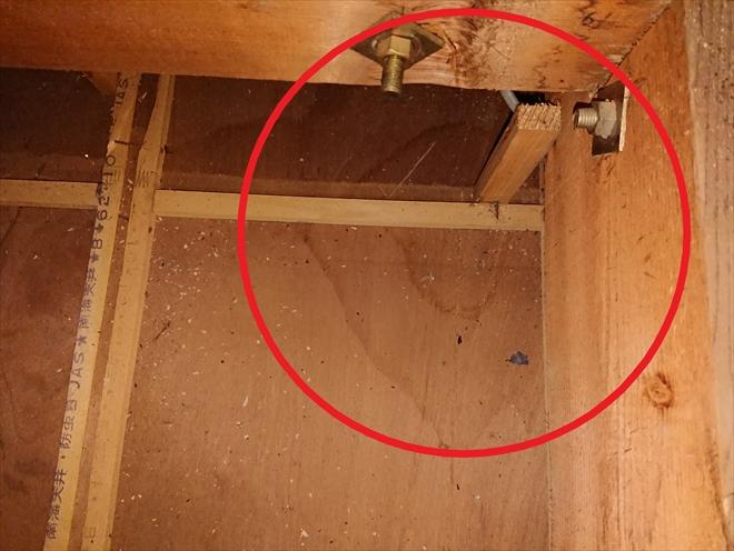 横浜市磯子区にて雨漏り調査、小屋裏から原因を探っていきます