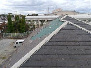 お隣の屋根の様子