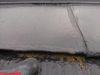 雨漏り調査3