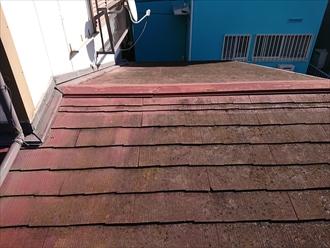 屋根表面が雨水を吸い込みすぎてカビの繁殖や苔や藻で黒ずんでしまっている様子