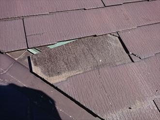 緑色の防水紙が見えてしまっている状態は放置しておくと雨漏りの要因になります。早めの補修、改修が必要です。