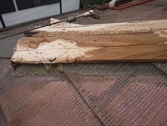 貫板がいつからか分かりませんが腐食しきっており、これでは棟板金がめくれてしまうのも理解できます。釘が固定できません。