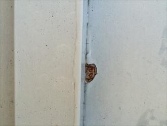 中郡大磯町東小磯で瓦棒葺きの屋根を調査、錆の発生は塗り替える時期になります