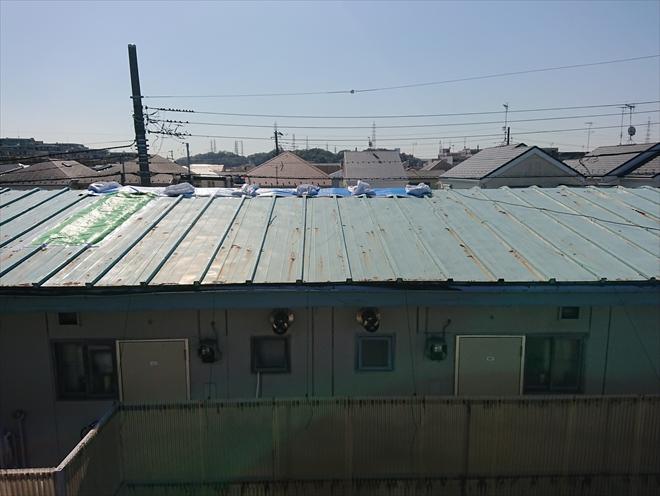 藤沢市長後にて築40年経過したアパートの屋根調査、瓦棒葺きのトタン屋根が一面パコっとめくれている場合は葺き替え工事が必要です