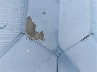 棟板金に塗られた塗膜の剥がれ
