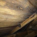 天井裏を確認することで雨漏りの有無が分かる