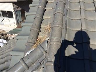 瓦屋根の構造上の隙間に落ち葉や枯れ葉が詰まる雨漏りする危険性があります
