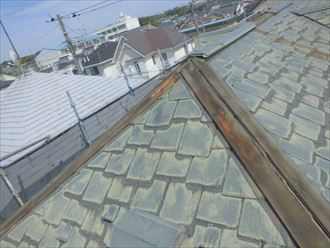 葉山町一色で浮いた棟板金を交換、外れてない棟板金の内部の貫板も傷んでおりました