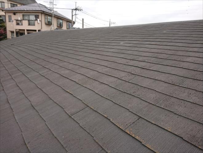 緩い勾配の屋根は汚れが流れ落ちにくく、そこに水が残っていしまうと苔や藻、カビなどの繁殖の手助けになってしまいます