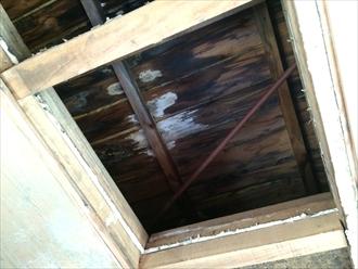 雨漏りで抜け落ちた天井の奥に腐食した野地板を発見
