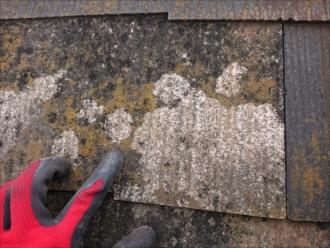 苔がない所はスレート屋根の素地が出てしまっている状態です
