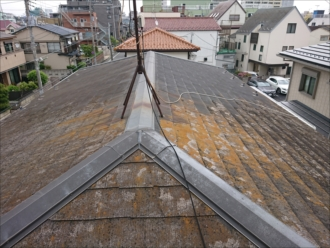 西側から屋根全体を見てみると、東側だけ苔が少ない