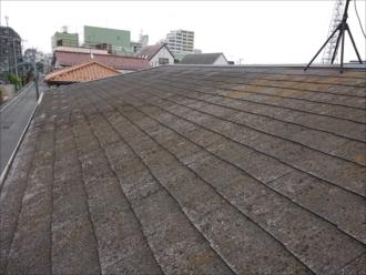 屋根に上がって見ると緩い勾配の屋根でした