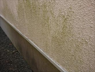 モルタル外壁の表面は汚れが付着しやすい