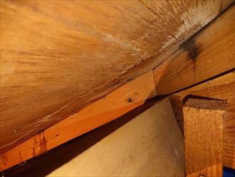 綺麗な屋根の裏側は雨漏りしておりました