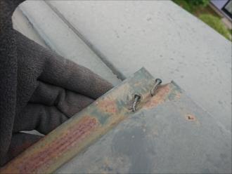 棟板金の錆と釘の浮き