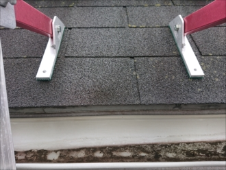 屋根に梯子を架けてすぐに分かる軒樋に雨水が溜まっている様子
