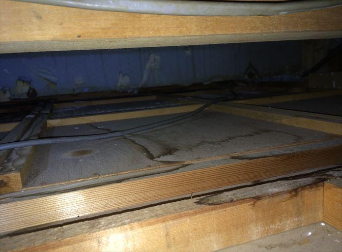 小屋裏で雨漏りを確認