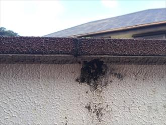 笠木のメンテナンスも屋根と同じくらい大切です