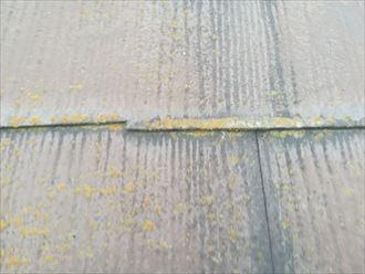 大和市西鶴間の塗装されたスレート屋根は、棟板金の釘抜けとスレートのひび割れが起こってました
