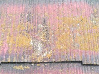 スレートに塗られた塗膜が黒くなっている