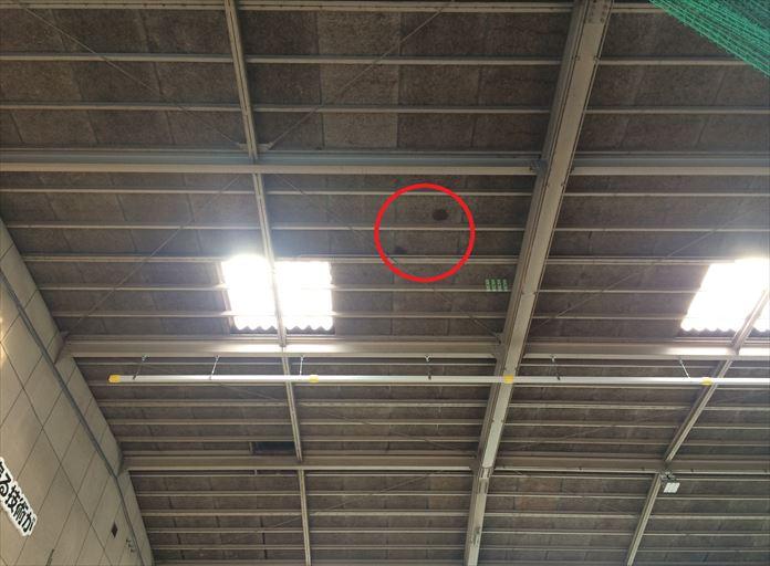 工場屋根の裏側に雨漏りの形跡