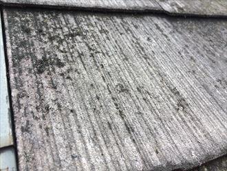 茅ヶ崎市本村でスレート屋根塗装のご依頼、傷み過ぎたスレートは塗装が困難です