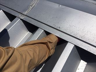 工場屋根の棟付近を調査
