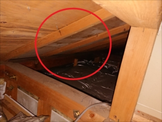 一階の雨漏りの真上あたりになる小屋裏の野地板は白カビが発生していました