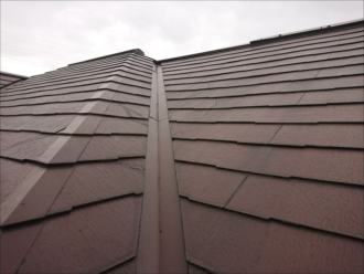 急勾配で谷や棟が入り混じる複雑な形状の屋根