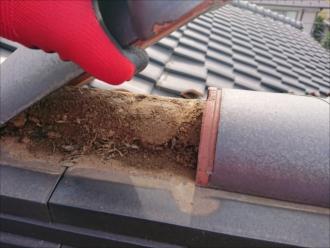 通常銅線で固定されているはずが綺麗に銅線が切られており、冠瓦が手で簡単に持ち上がってしまいます