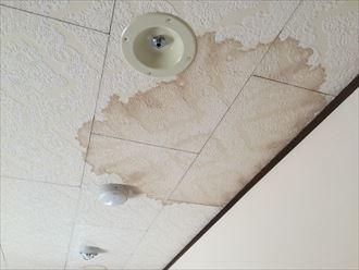 大和市桜森で発生した雨漏りは棟板金の飛散が原因でした